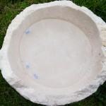 Tanya-Josham-Fish-Bowl